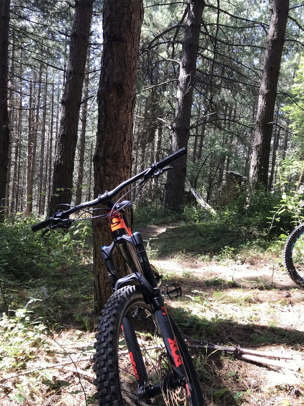 Cannondale - Jekyll carbon 3 modello 2018