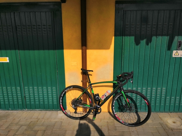 altra - Raleigh Mustang