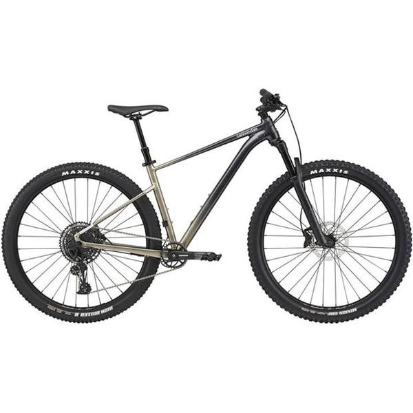Cannondale - Trail SL 1 2021 Meteor Gray