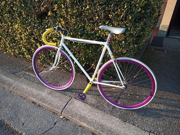 Assemblata - Bici Scatto fisso/Single Speed