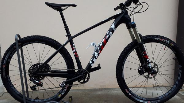 Ghost Bikes - asket8