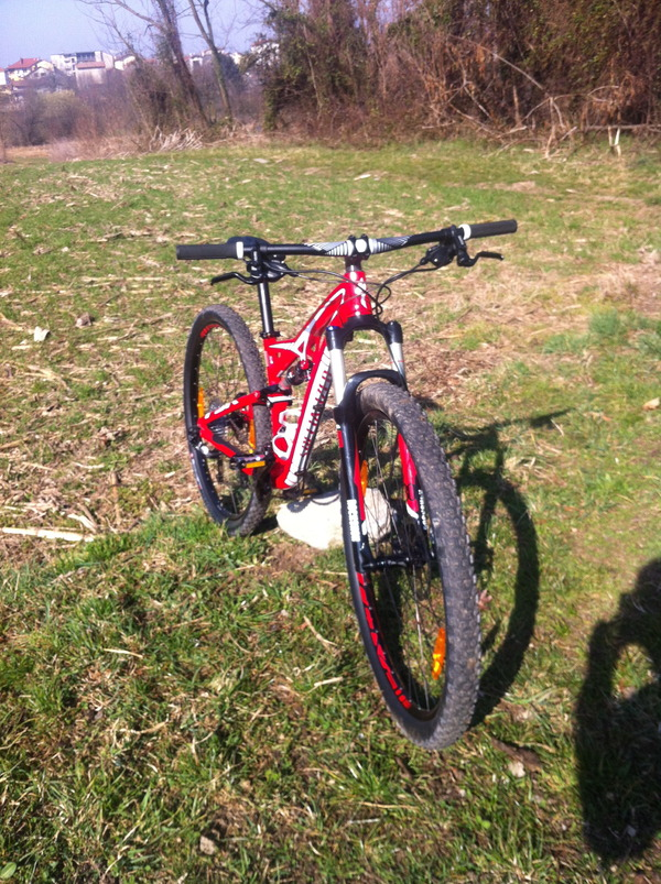 Specialized - camber comp fsr