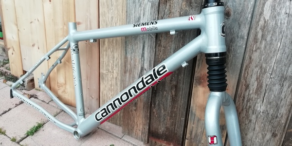 Cannondale - team