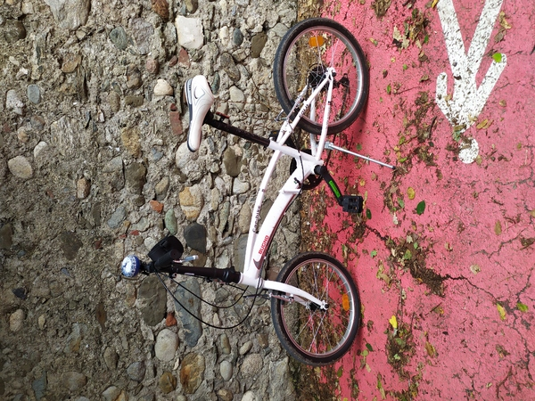 altra - Masciaghi linea Gianni Bugno car bike