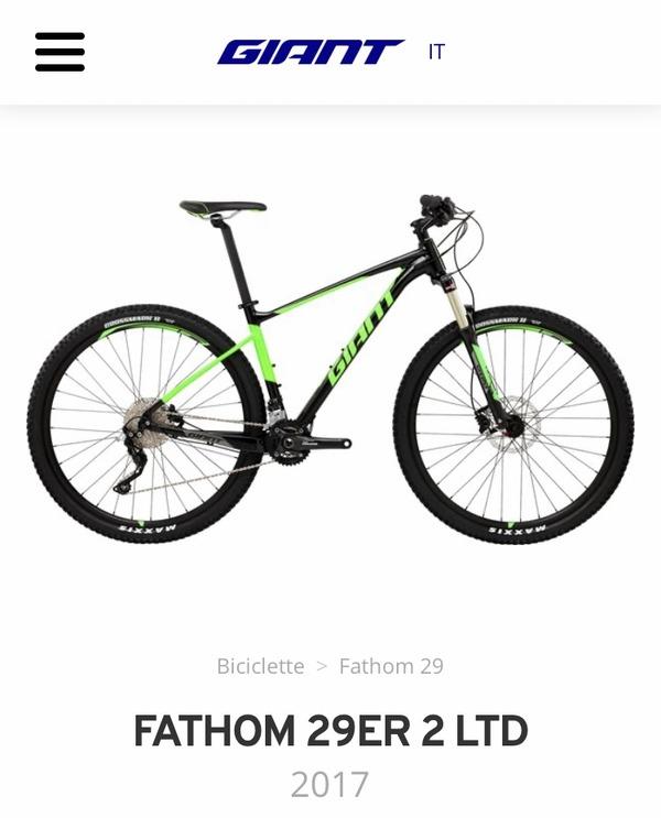 Giant - Fathom 29 2 LTD