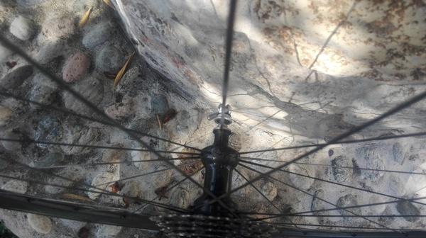 altra - Ruote carbonio bici da corsa (no brand) profilo 38mm tubolare
