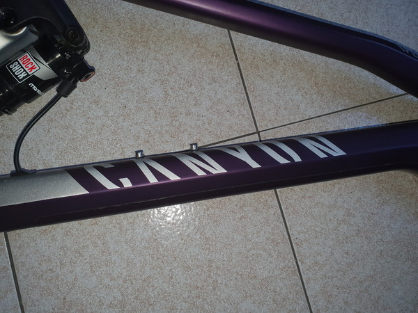Canyon - Spectral CF 9.0 EX WMN