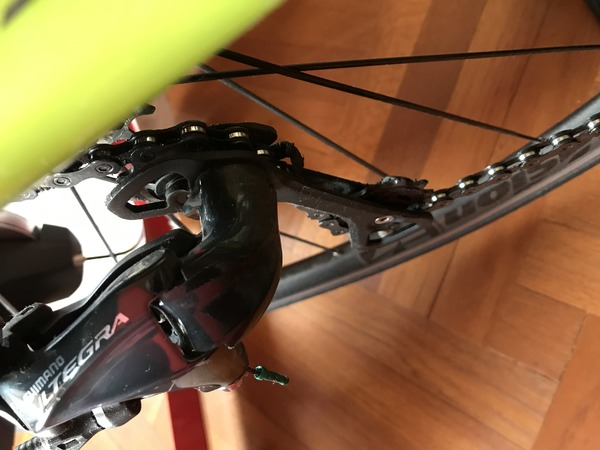 Cannondale - Synapse in carbonio